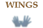 WINGS - FURNITURE FOR OPTICAL STORES - JEWELERY - RESIDENTIALS. DESIGN AND REALIZATION.